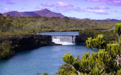 "Australia: Call for projects ""Fonds Pacifique"" 2021"