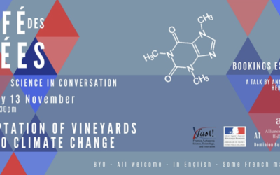 "Café des Idées ""Adaptation of vineyards to climate change"""